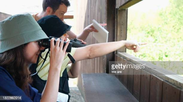 friends watching wildlife from a bird hide - headwear stock pictures, royalty-free photos & images
