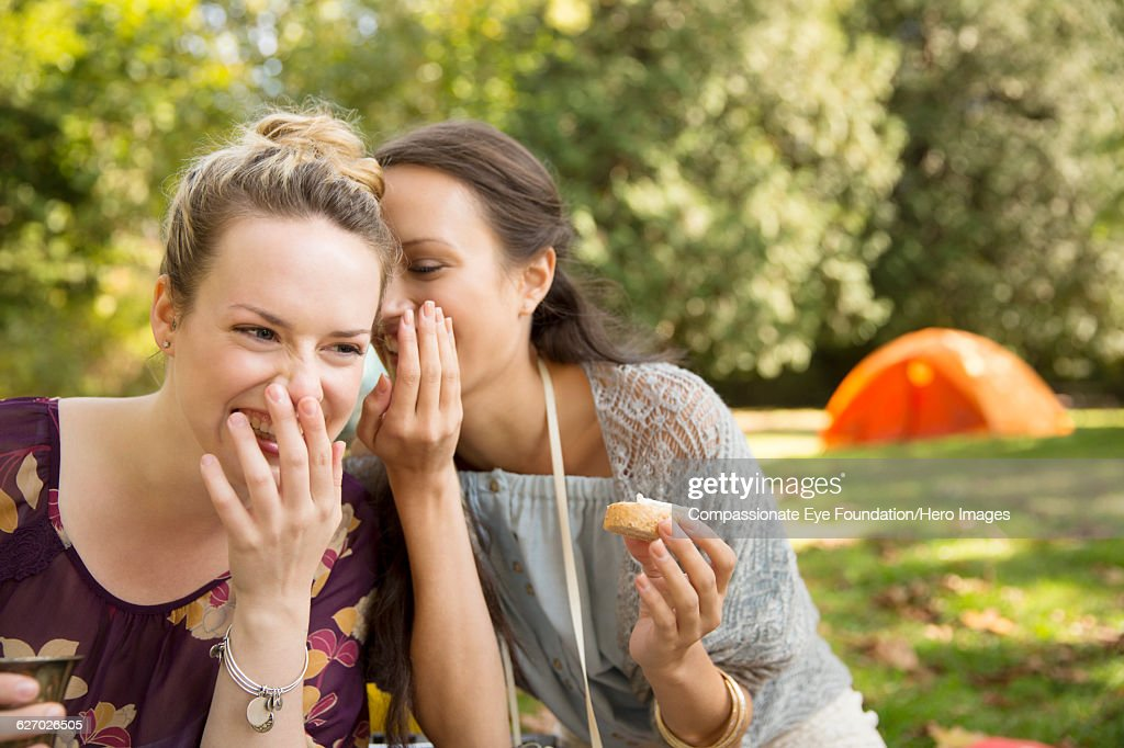 Friends whispering together at picnic in park : Stock Photo