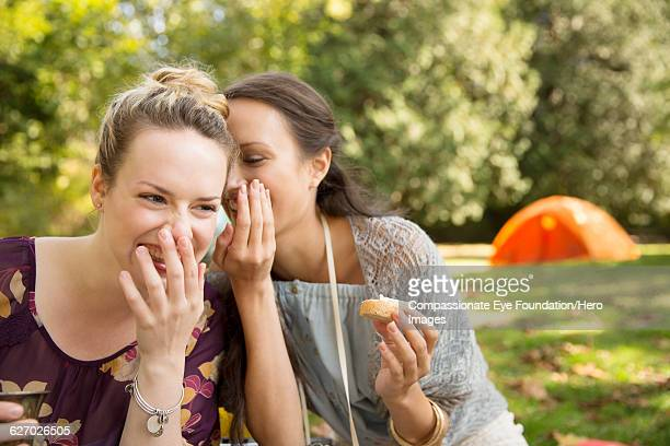friends whispering together at picnic in park - gossip stock pictures, royalty-free photos & images
