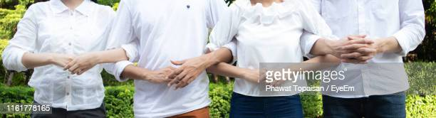 friends with arms in arms standing at park - arm in arm stock pictures, royalty-free photos & images