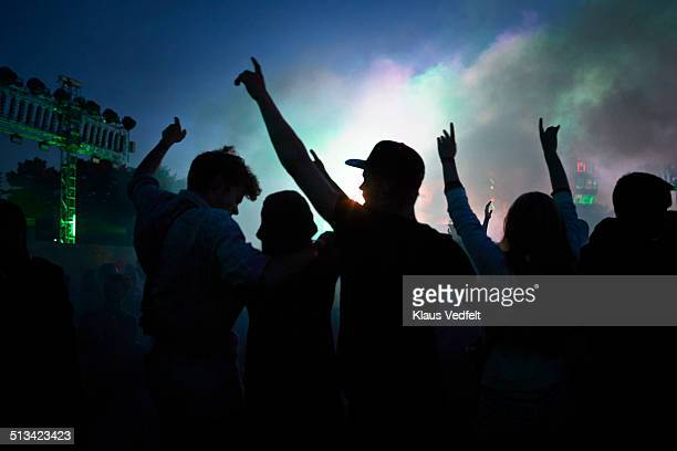 Friends with raised hands at outside concert