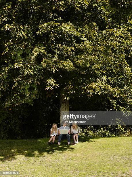 3 friends working under a tree
