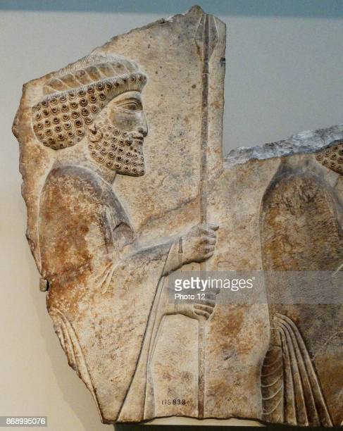 Frieze from a wall at Palace in Persepolis a Royal Achaemenid city in the Persian Empire The palace was built between 6th Century BC5th Century BC