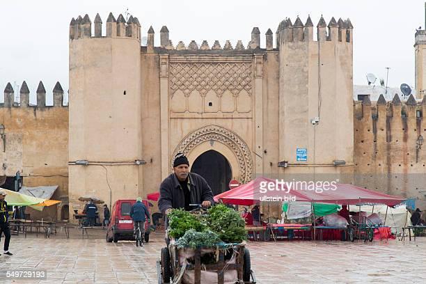 frische Minze auf einem Verkaufskarren in Fes Marokko