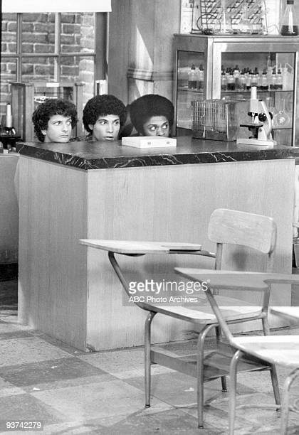 BACK KOTTER Frog Day Afternoon Season Four 11/25/78 Horshack recruited Epstein and Freddie to rescue a frog in their biology class