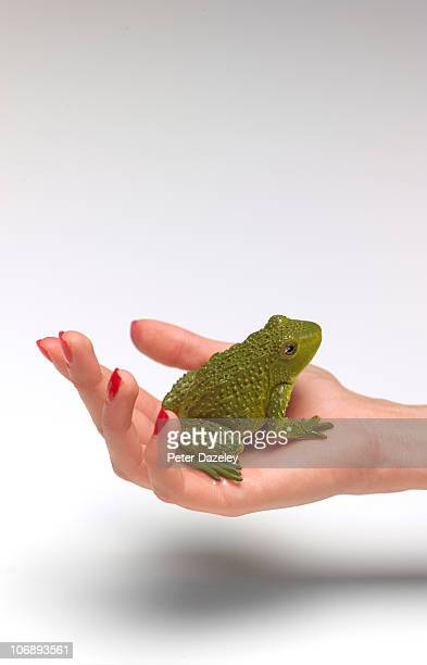 Frog in palm of hand