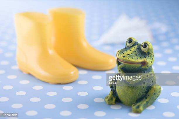 Frog ornament and rain boots