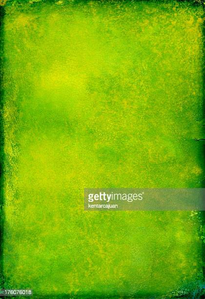 Frog Skin Green Poster
