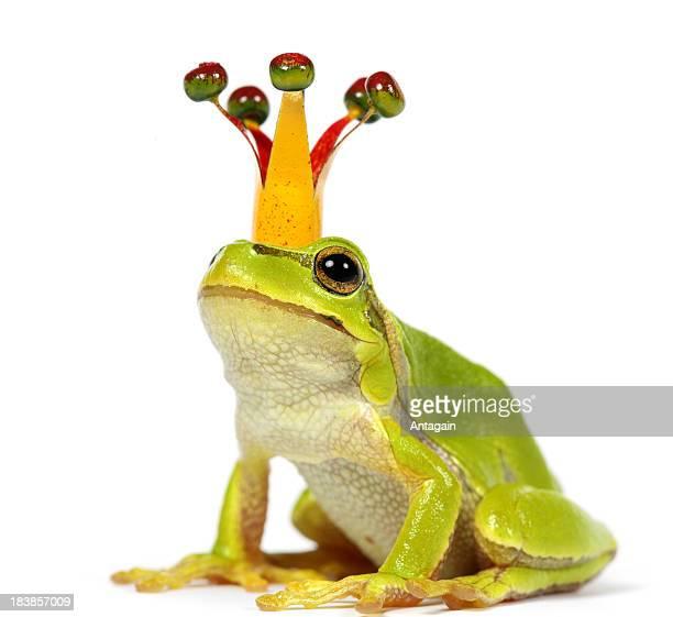 Frosch mit Krone