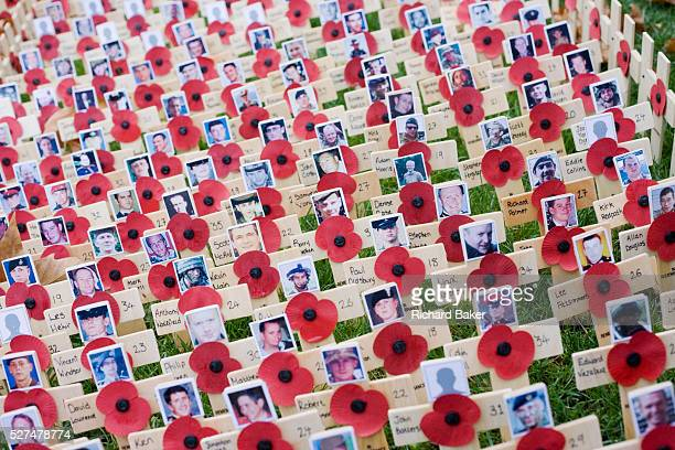 From a height looking down on markers that symbolise war dead hundreds of crosses and poppies mark fallen British soldiers and other servicemen and...