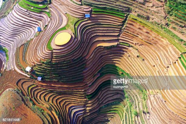 from above view on rice terraces in ha giang province of china flooded with water growing rise - yuanyang stock pictures, royalty-free photos & images