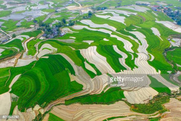 From above view on rice terraces in Ha Giang province of China flooded with water growing rise
