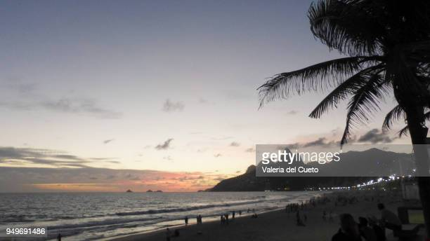 from arpoador´s edge the sunset framed by palm trees - sem fim... valéria del cueto stock pictures, royalty-free photos & images