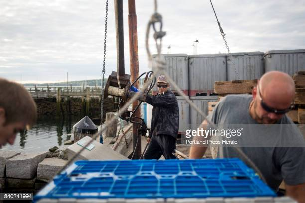 From left Cody Kunn Larry Wotton and Adam Purington unload unioncaught lobster from Fox Island Lobstering on Vinalhaven off of their smack boat to...
