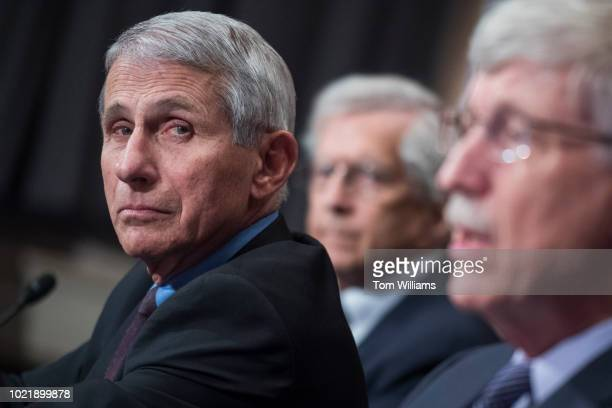 From left Dr Anthony Fauci director of National Institute of Allergy and Infectious Diseases Dr Richard Hodes director of the National Institute on...
