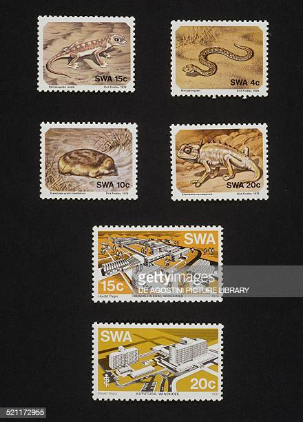 From left to right and from top to bottom postage stamp from the Animals of Namibia series depicting Namib sand gecko Peringuey's desert adder...