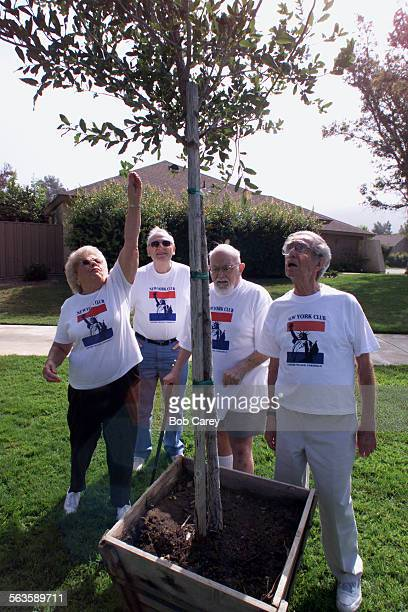 From left to right Lynn Lazarus Ben Perry Bob Skoarz and Milt Eisner look at a tree that will be dedicated to the victims of the 911 terror attacks...