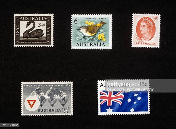 From left to right top to bottom postage stamp commemorating the first Western Australia postage stamp 1954 postage stamp depicting Acanthiza...