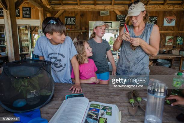From right Deb Dramby the Market Manager and Education Coordinator for Willowsford opens a moth cocoon as Anna Weisberg Claire Overstreet and Andrew...