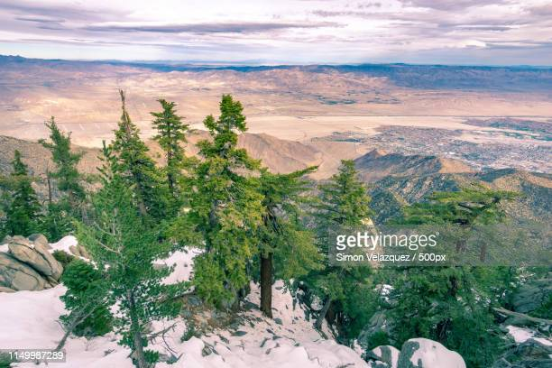 from snow to sand - chino california stock pictures, royalty-free photos & images