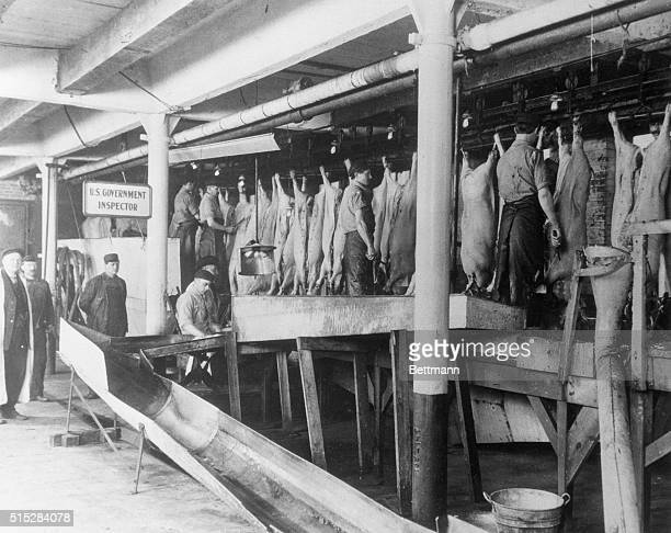 From the colonial days to the opening of the Union Stock Yards in Chicago in 1865 the production of livestock and the processing of the meat was only...