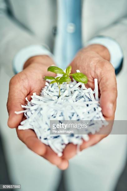 from the old grows the new - responsible business stock photos and pictures