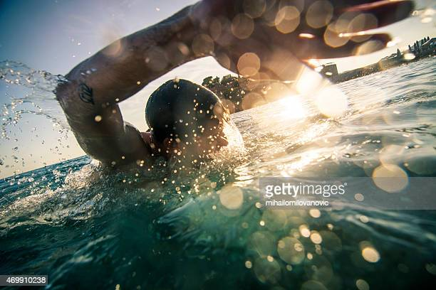 front crawl - sportsperson stock pictures, royalty-free photos & images