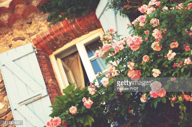 front of house with roses flowers in the famous french village of saint-paul de vence - サンポールドヴァンス ストックフォトと画像