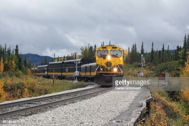 front view of alaska railroad in autumn landscape - rainer grosskopf fotografías e imágenes de stock