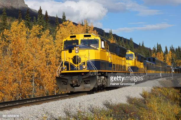 Front view of Alaska Railroad in autumn landscape