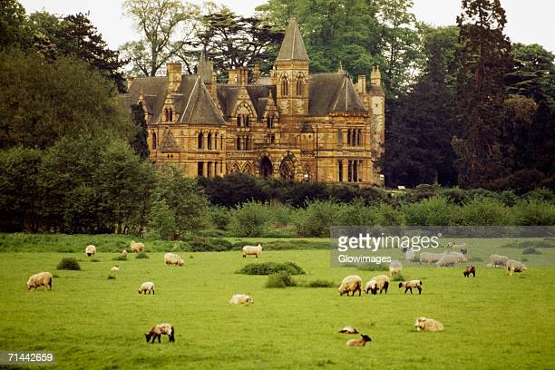 Front view of Ettington Park & Hotel amidst greenery, Stratford, England
