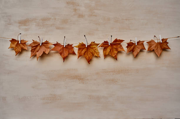 Front view of seven dry leaves hanging by white clothspin in a string line. Leaf is not falling on foliage on the floor on an orange background in an autumn studio scene. Horizontal photo