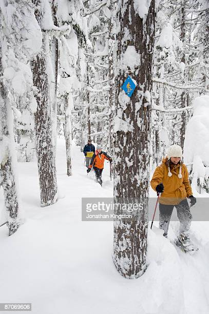 Front view of three adults in snowshoes hiking through deep powder in a forest in Bend, Oregon.