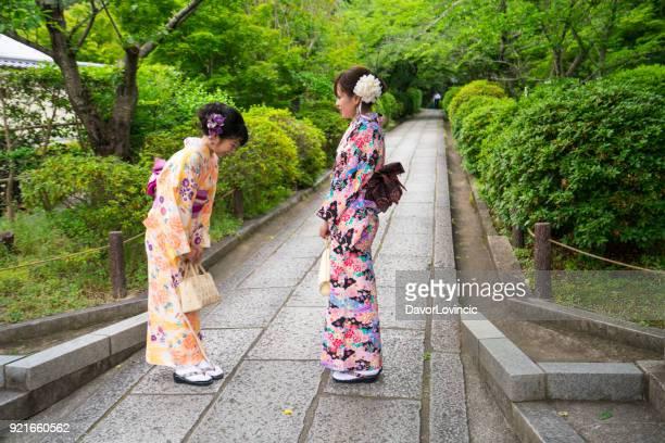伝統的なドレスは立っている京都の古い部分での公園の通路で互いの挨拶と 2 つの美しい女性の正面図