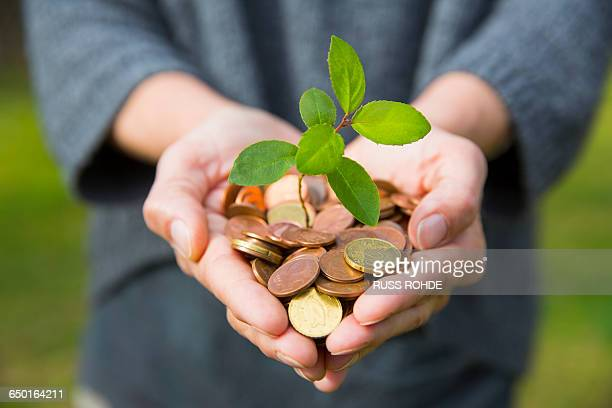 front view of womans cupped hands holding tree seedling growing from coins - responsabilité photos et images de collection
