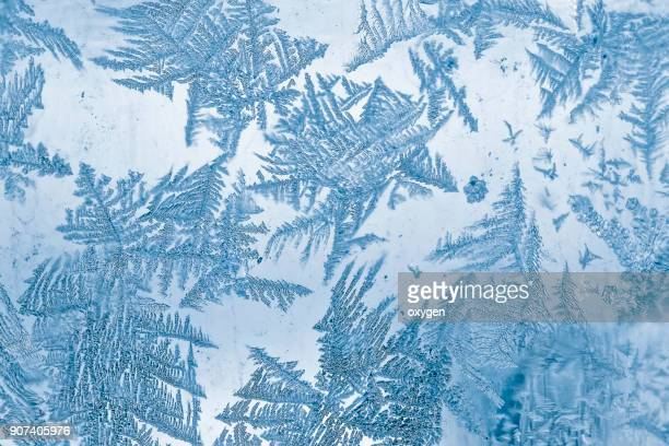 frost blue pattern on window - snowflake background stock photos and pictures