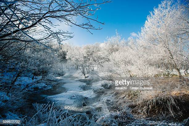 Frost of Akan lake in winter