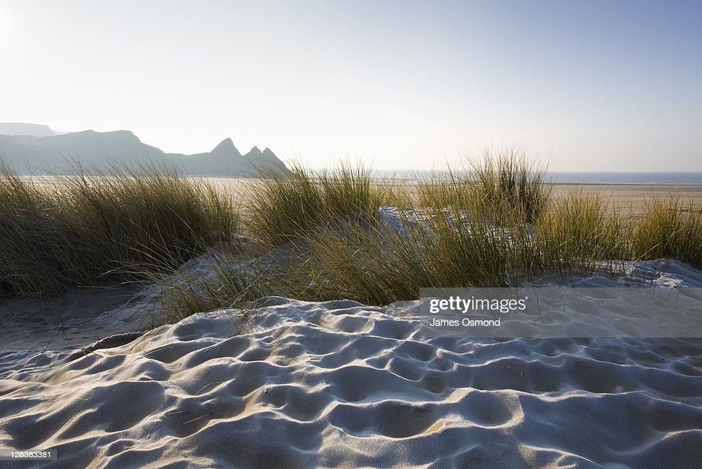 Frost on grassy sand dunes at Three Cliffs Bay on a sunny day on the Gower peninsula, Swansea. : Stock Photo