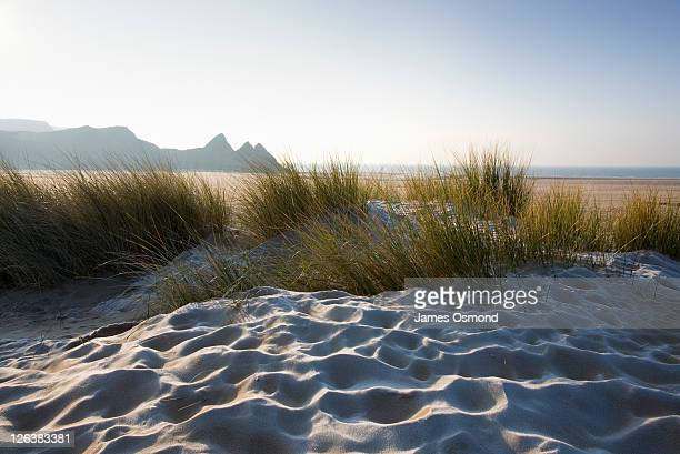 Frost on grassy sand dunes at Three Cliffs Bay on a sunny day on the Gower peninsula, Swansea.