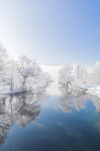 Frost-covered trees mirrored in a river. Snowy winter landscape - gettyimageskorea
