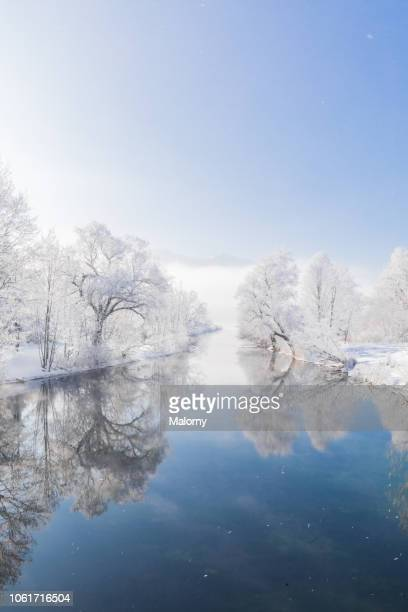frost-covered trees mirrored in a river. snowy winter landscape - flussufer stock-fotos und bilder