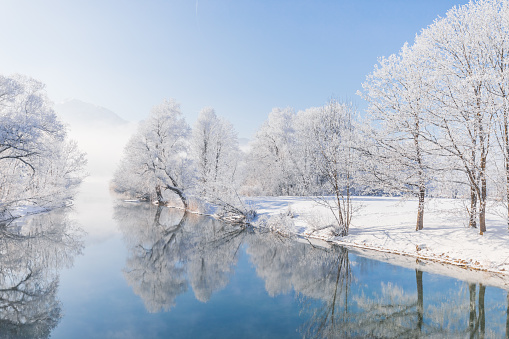 Frost-covered trees mirrored in blue river or lake - gettyimageskorea