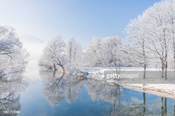 frost-covered trees mirrored in blue river or lake - bavarian alps stock pictures, royalty-free photos & images
