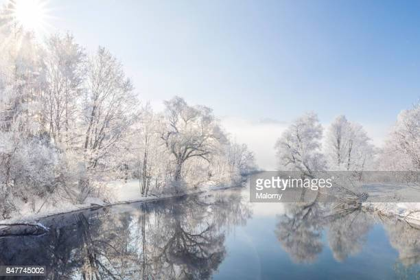 frost-covered trees mirrored on river in winter - winter weather stock photos and pictures