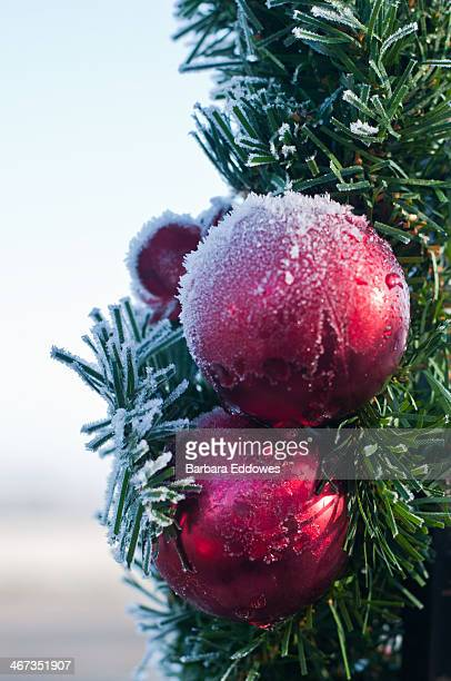 Frosted Baubles