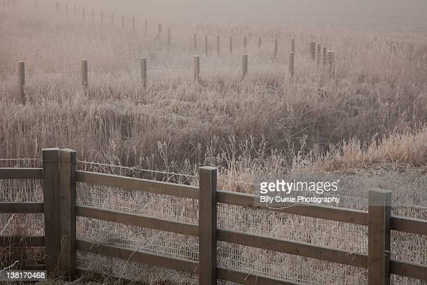 Frosted fences
