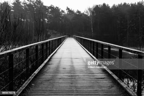 Frosty Bridge