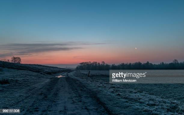 frosty foggy morning - william mevissen bildbanksfoton och bilder