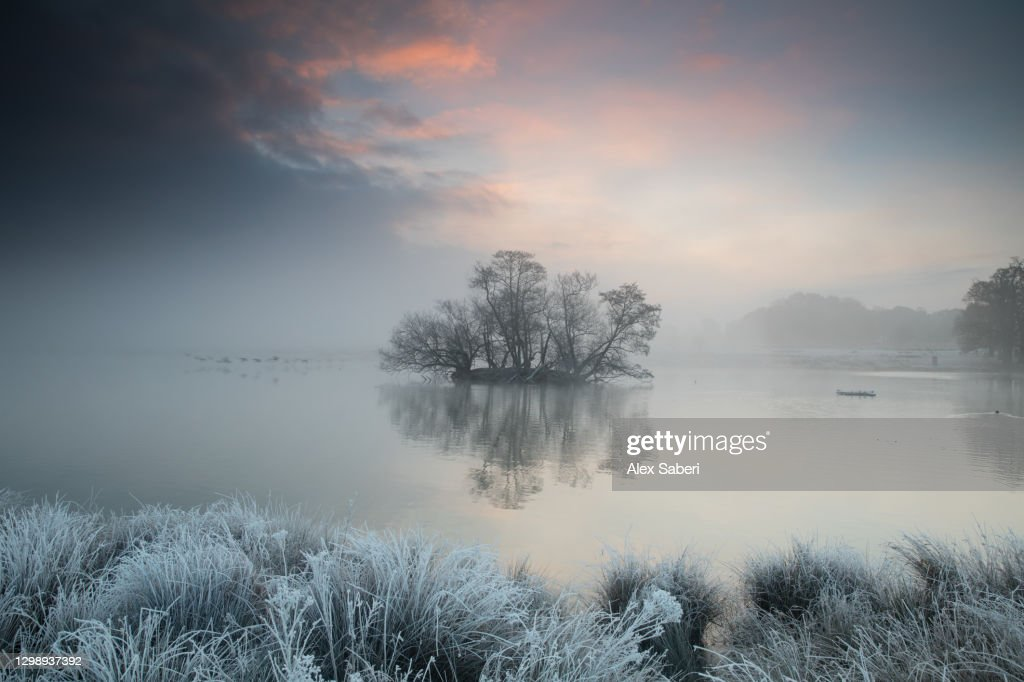A frosty lake scene. : Stock Photo