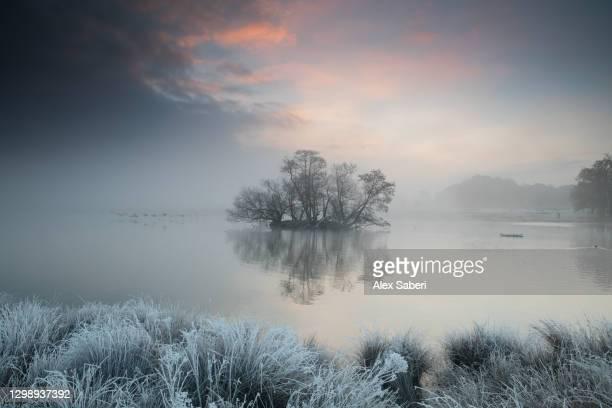 a frosty lake scene. - alex saberi photos et images de collection